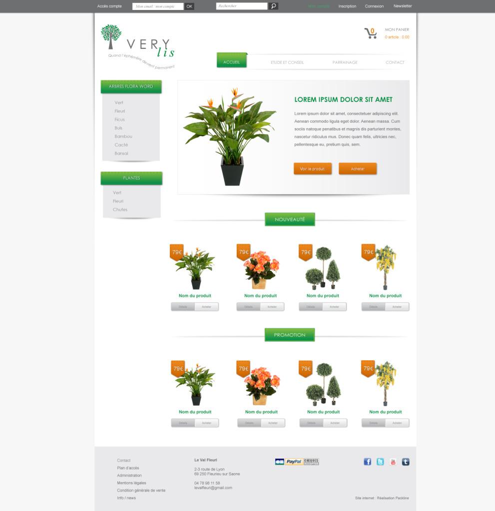 Création de site internet Rhone alpes