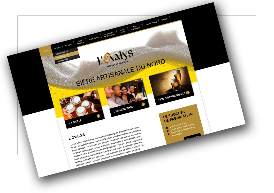 Production de site de vente Lyon - L'ovalys