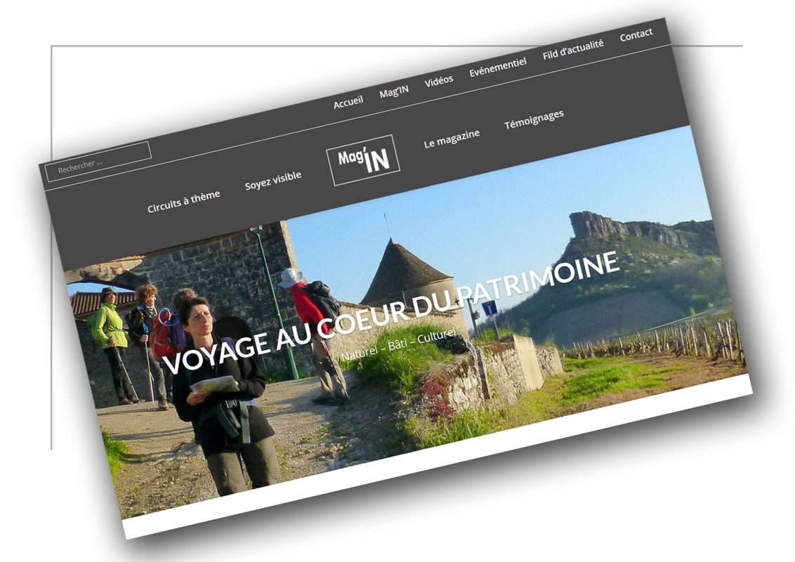 Production de sites marchand Lyon - Magin