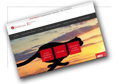 Production de site internet Rhône Alpes