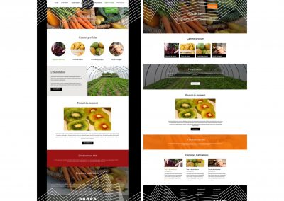 Création de site ecommerce Lyon